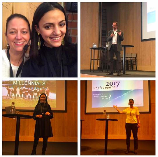 Chefsdagarna Sveriges Domstolar 2017
